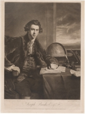 Joseph Banks Esq, 1774. William Dickinson after Sir Joshua Reynolds (National Portrait Gallery, http://www.portrait.gov.au/site/collection.php)