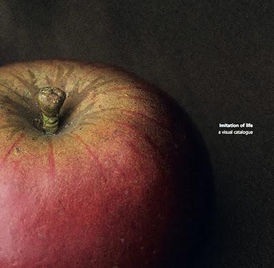 'Imitation of life' cover, Santos Museum of Economic Botany